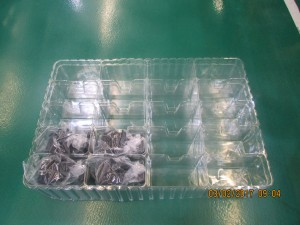 Tray 20pcs 570x380x80mm